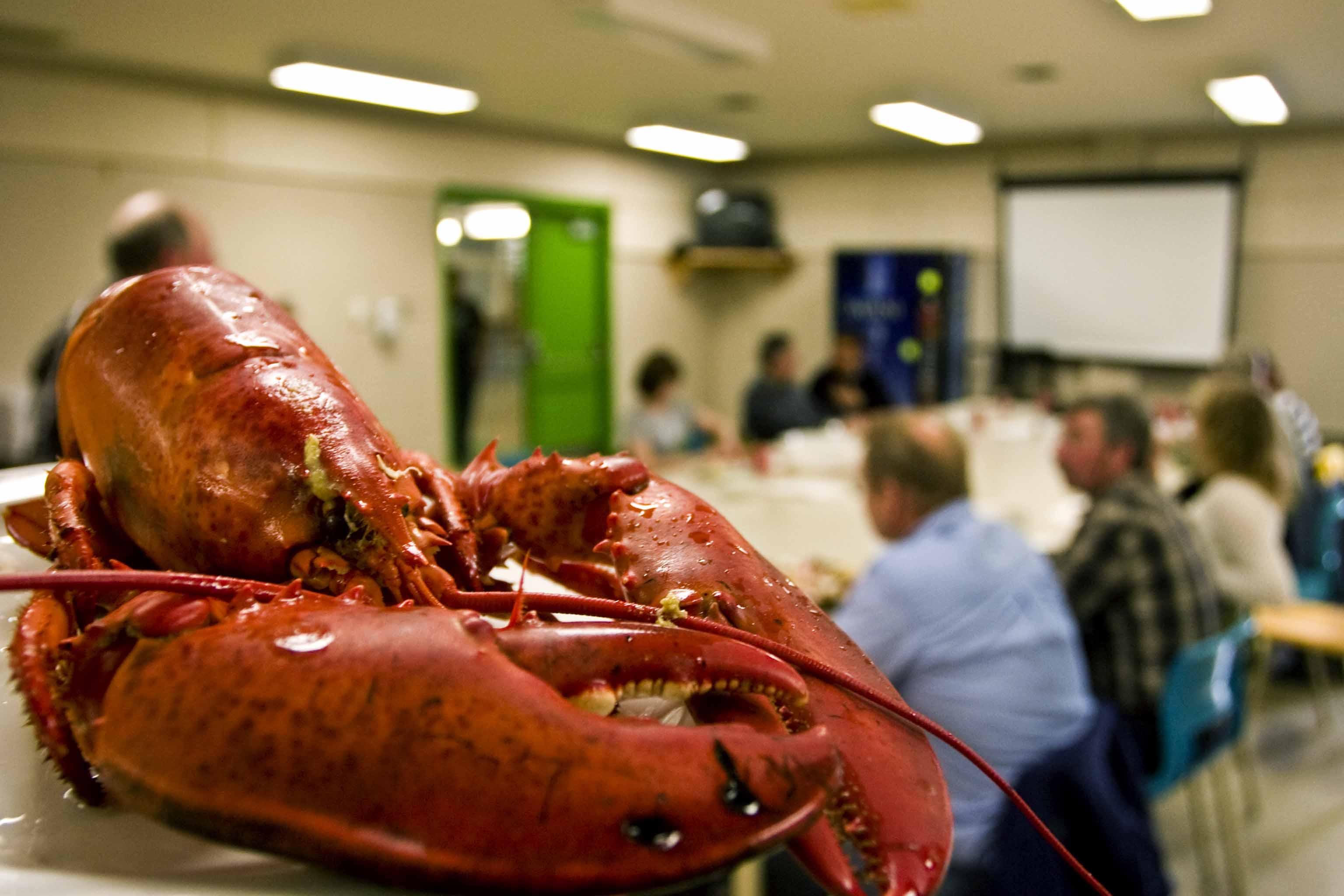 Lobster_dinner