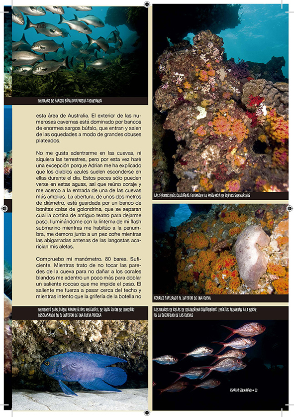 Pescando_abalones6